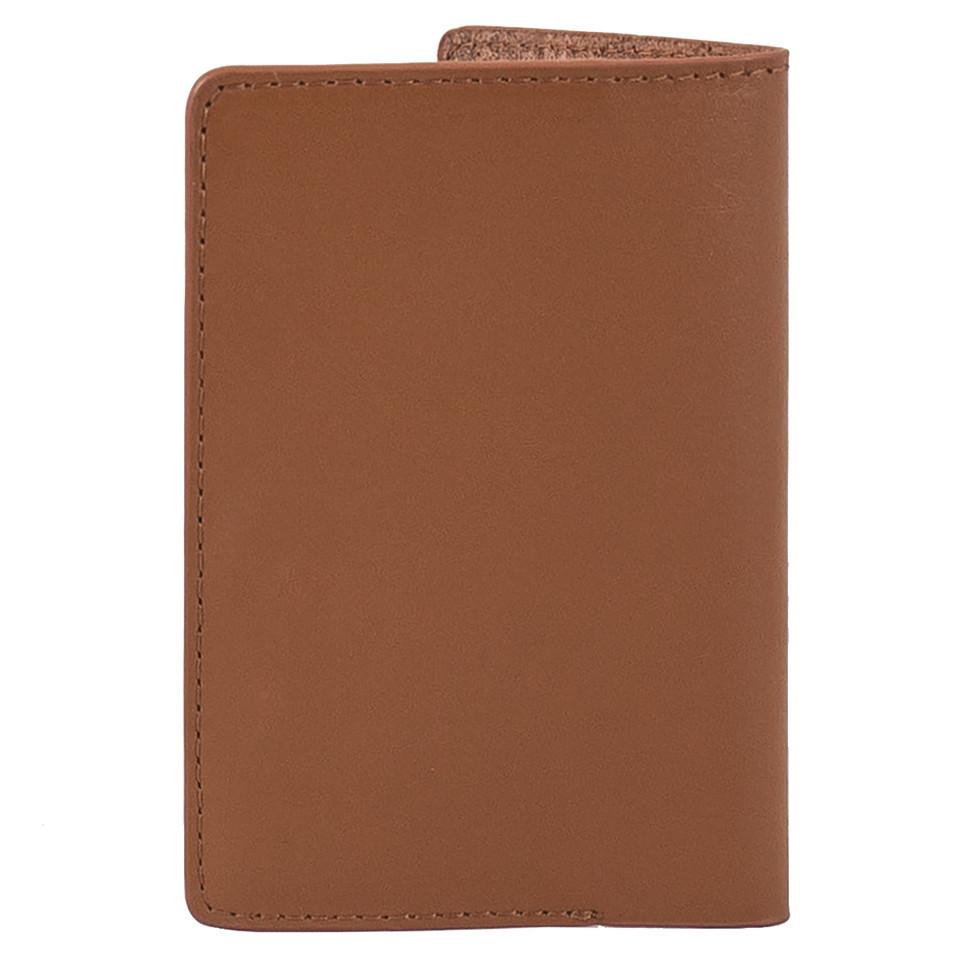 kakashi-airi-vi-passport-s-brown4